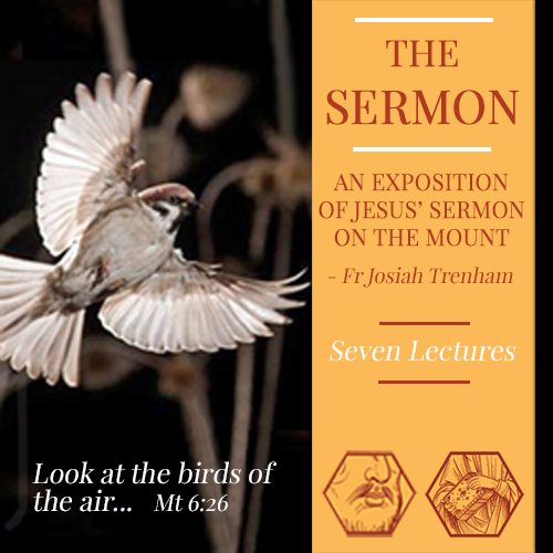 Patristic Nectar Publications - Store - Theological Lectures